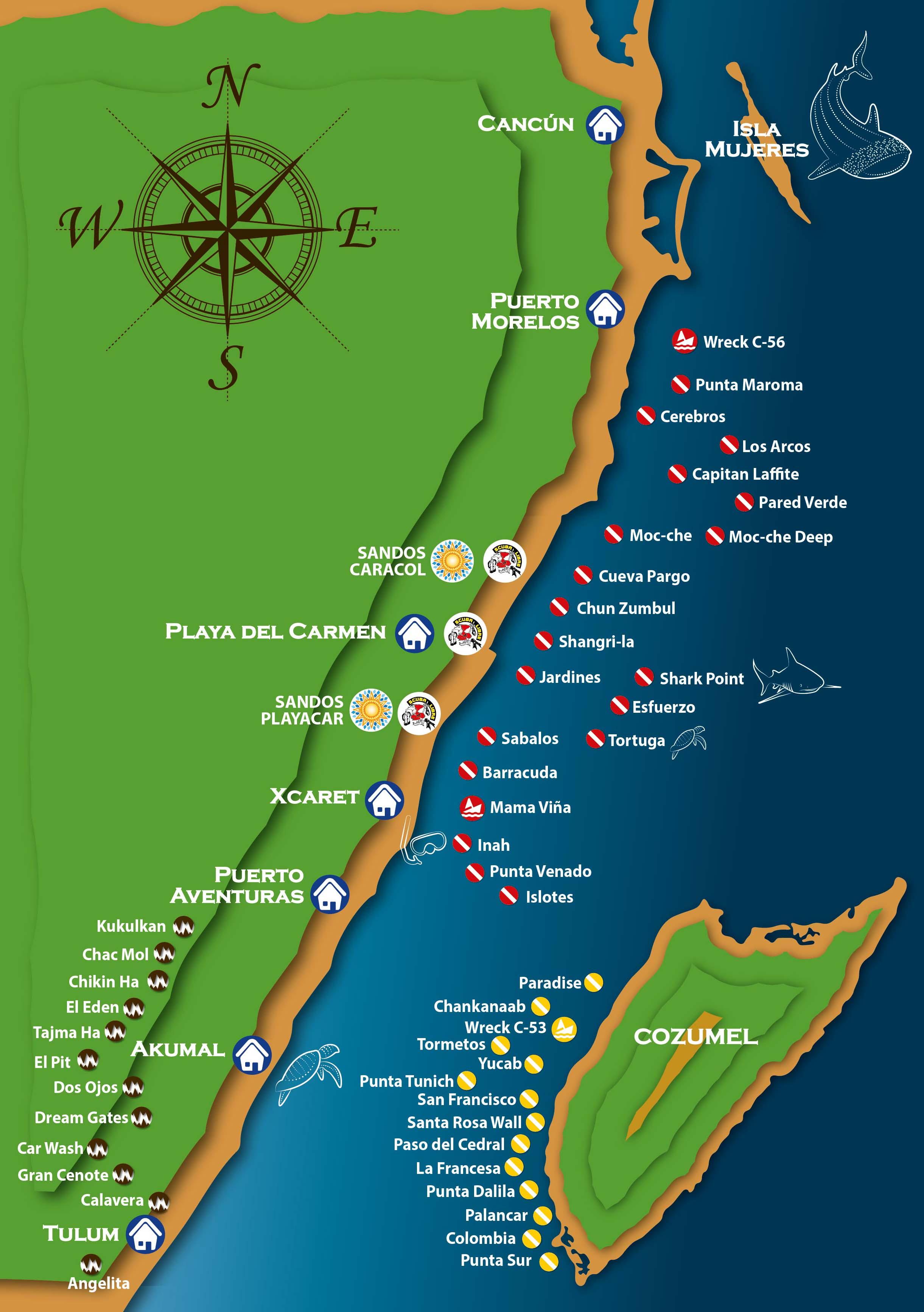 Buceo En Playa Del Carmen Y Cozumel En Mexico Scuba Libre